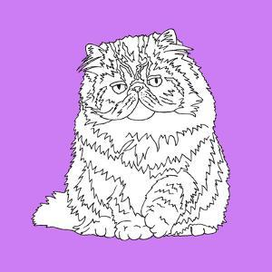 Fat Fluffy Cat by Anna Nyberg