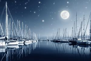 Beautiful Landscape of Yacht Harbor at Night, Full Moon, Marina in Bright Moonlight, Luxury Water T by Anna Omelchenko