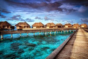 Luxury Resort, Many Cute Bungalow on the Water, Amazing View, Beautiful Coral under Transparent Wat by Anna Omelchenko