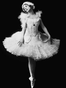 Anna Pavlova in the Ballet the Dying Swan by Camille Saint-Saëns, C. 1910