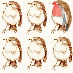 Robin by Anna Platts