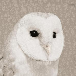 Feathered II by Anna Polanski