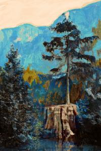 Pine on Blue by Anna Polanski