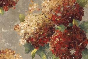 Vintage Hydrangea by Anna Polanski