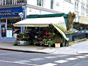 Harper and Toms Flowers, Notting Hill in London by Anna Siena