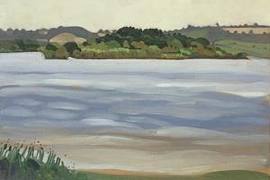 Denny Island, Chew Valley Lake by Anna Teasdale