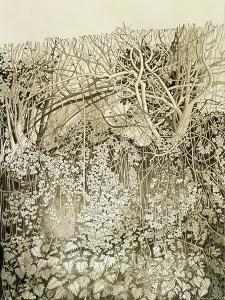 Hedge and Bank by Anna Teasdale