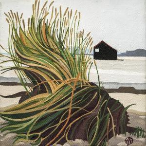 Marram Grass Rye Harbour by Anna Teasdale