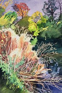 River Avon, Bath by Anna Teasdale