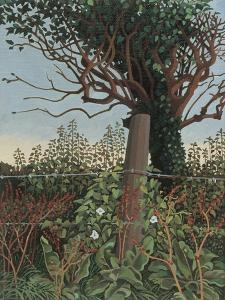 The Wire Fence by Anna Teasdale