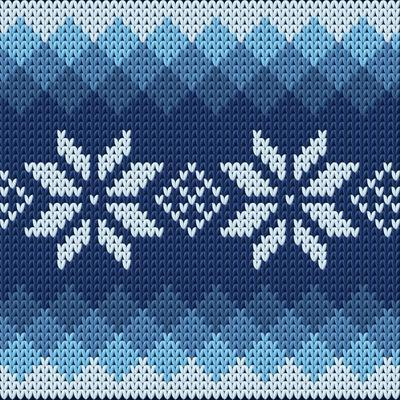 Detailed Knitted Blue Jacquard Pattern with White Flowers