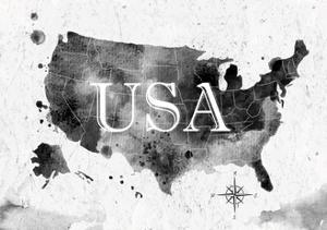 Ink United States Map by anna42f