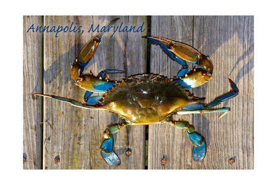 Annapolis, Maryland - Blue Crab on Dock-Lantern Press-Art Print