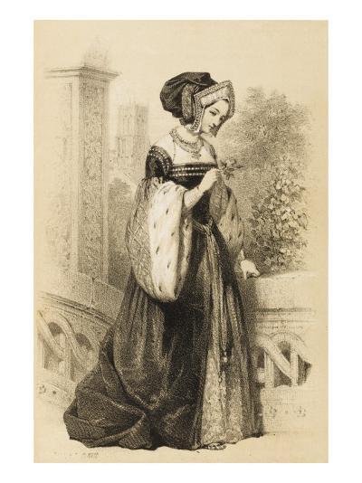 Anne Boleyn 2nd Queen of Henry VIII from 1533 - 1536--Giclee Print