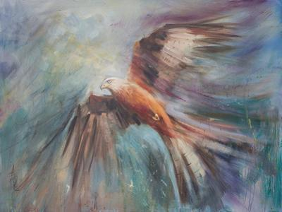 Red Kite Riding The Thermals 2 by Anne Farrall Doyle