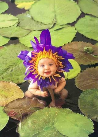 Baby Pond