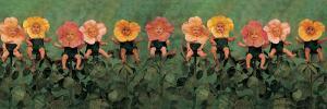 Wild Roses by Anne Geddes