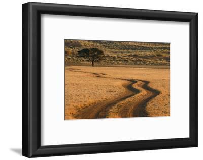 Dirt Road Near Sossusvlei, Namibia