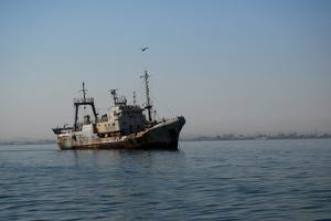 Seagull Flies over Abandonned Ship, Swakopmund Town, Namibia by Anne Keiser