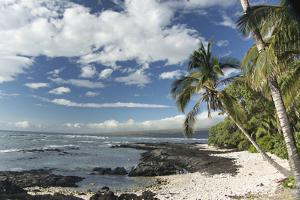The Rocky Shoreline Along the Kona Coast by Anne Keiser