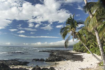 The Rocky Shoreline Along the Kona Coast