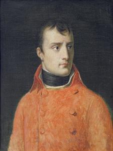 Napoléon Bonaparte, First Consul by Anne-Louis Girodet de Roussy-Trioson