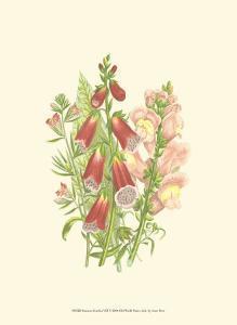Summer Garden VIII by Anne Pratt