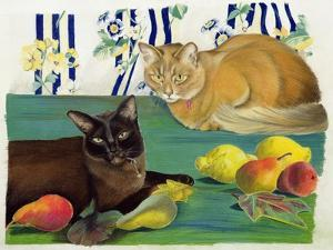 Cats with Fruit by Anne Robinson