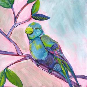 Anne Bird by Anne Seay