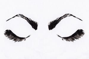 Eyelashes by Anne Seay