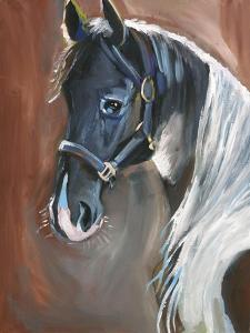 Horse by Anne Seay