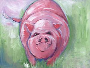 Pig by Anne Seay