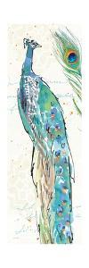 Peacock Garden IV by Anne Tavoletti