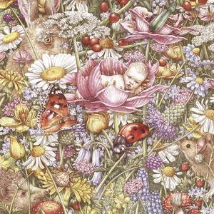 Flower Babies by Anne Yvonne Gilbert