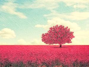 A Beautiful Tree in a Pretty Field by Annette Shaff