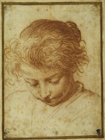 Head of a Young Girl Looking Downwards