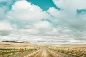 Dirt Road Travels by Annie Bailey Art