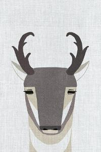 Pronghorn Antelope by Annie Bailey Art