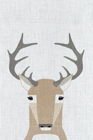 Whitetail Deer by Annie Bailey Art