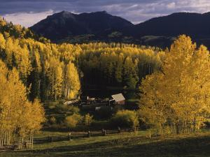 Farm Nestled Among Aspen Trees in Fall Colors and Mountains, Telluride, Colorado by Annie Griffiths Belt