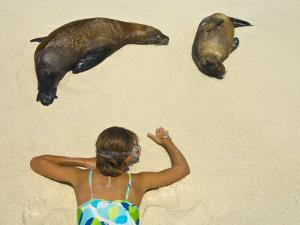 Girl Observing Galapagos Sea Lions Resting on a Beach by Annie Griffiths Belt