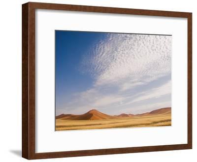 Huge Red Sand Dunes of the Namib Desert