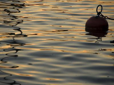 Sunlight Reflected in Rippled Water and a Buoy on Lake Zurich
