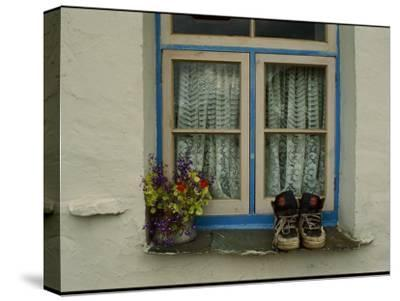Shoes and Flowers on a Windowsill