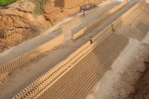 Hand Made Bricks Laid Out on the Ground to Dry before Baking, Northeast of Jaipur, Rajasthan, India by Annie Owen