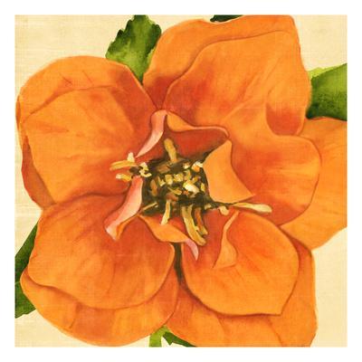 Copper Petals I
