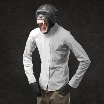Annoyed Monkey Shouting On Black Background-Aaron Amat-Art Print