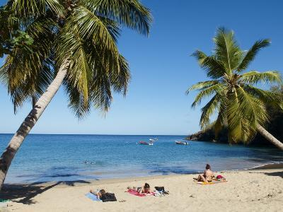 Anse Dufour Beach, Martinique, French West Indies, Caribbean, Central America--Photographic Print