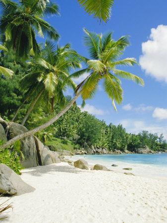 Anse Intedance, Mahe, Seychelles, Indian Ocean-Robert Harding-Photographic Print