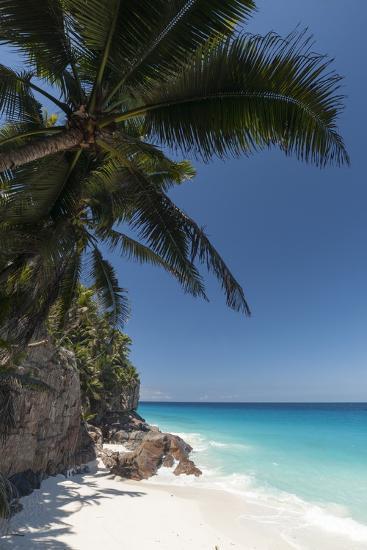 Anse Macquereau, Fregate Island, Seychelles, Indian Ocean, Africa-Sergio Pitamitz-Photographic Print